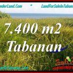 JUAL TANAH di TABANAN BALI 74 Are di Tabanan Selemadeg