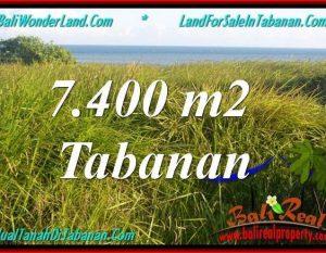 TANAH di TABANAN JUAL MURAH 7,400 m2  View Laut, Gunung dan sawah