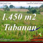 DIJUAL MURAH TANAH di TABANAN Untuk INVESTASI TJTB343