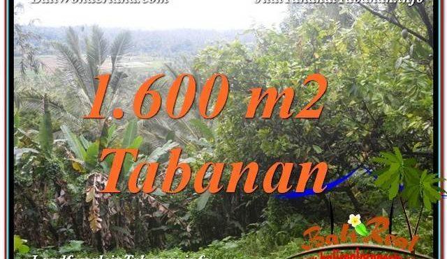 DIJUAL MURAH TANAH di TABANAN Untuk INVESTASI TJTB348