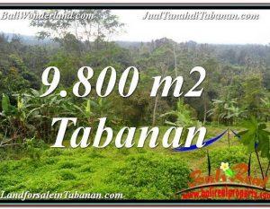 TANAH MURAH di TABANAN 98 Are View Laut dan sawah
