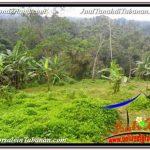 JUAL TANAH MURAH di TABANAN BALI 98 Are View Laut dan sawah