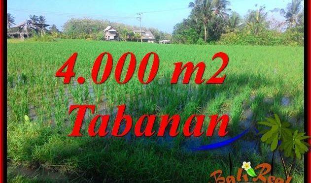 INVESTASI PROPERTI, TANAH MURAH DIJUAL di TABANAN TJTB352