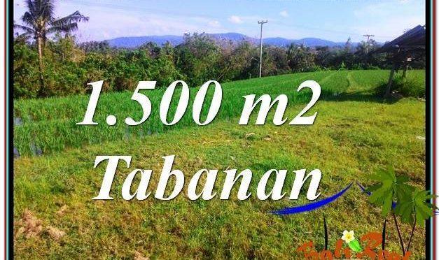JUAL TANAH di TABANAN 1,500 m2 View sawah