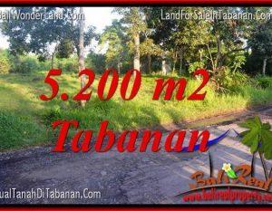 TANAH DIJUAL di TABANAN BALI 5,200 m2  View Kebun dan Sungai