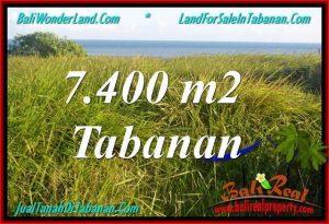 INVESTASI PROPERTI, DIJUAL MURAH TANAH di TABANAN BALI TJTB341