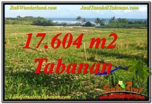 JUAL TANAH di TABANAN BALI 17,604 m2 di Tabanan Kerambitan