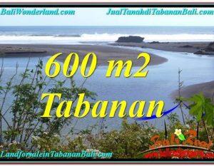 JUAL MURAH TANAH di TABANAN BALI 6 Are di Tabanan Selemadeg