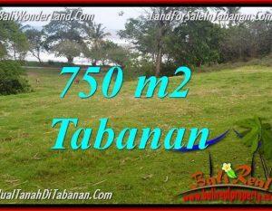 JUAL TANAH MURAH di TABANAN TJTB346