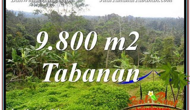 DIJUAL TANAH MURAH di TABANAN BALI 98 Are di Tabanan Selemadeg