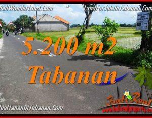 TANAH MURAH DIJUAL di TABANAN BALI 5,200 m2 di Tabanan Kediri