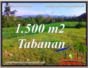 TANAH MURAH di TABANAN JUAL 1,500 m2  View sawah