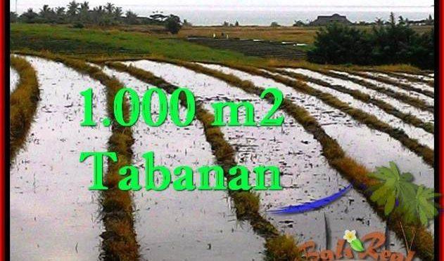 TANAH di TABANAN JUAL MURAH 10 Are View sawah, gunung dan laut