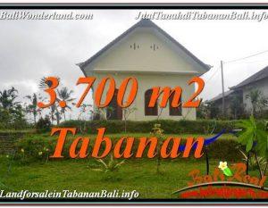 TANAH MURAH JUAL   TABANAN 37 Are View Kebun