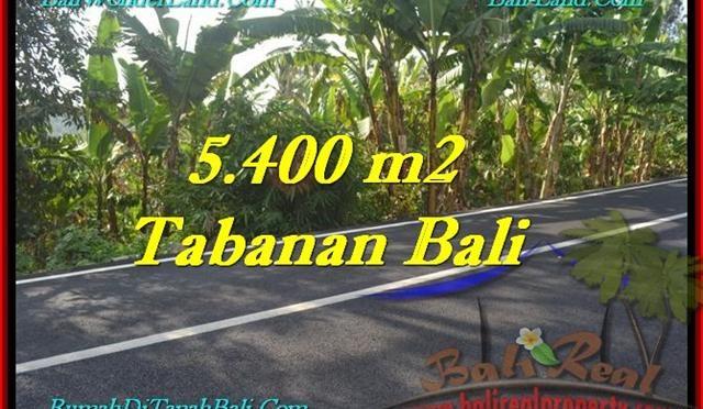 JUAL TANAH MURAH di TABANAN 5,400 m2 View Kebun
