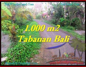 JUAL TANAH MURAH di TABANAN 10 Are di Tabanan Selemadeg