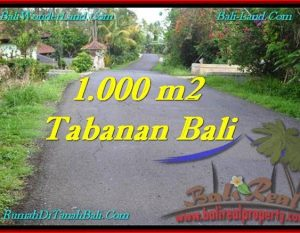 TANAH MURAH JUAL di TABANAN BALI 10 Are View Kebun