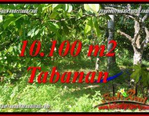 JUAL TANAH di TABANAN Untuk INVESTASI TJTB360