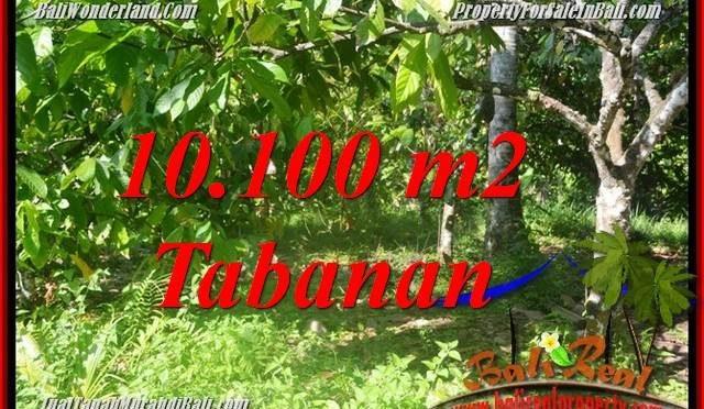 DIJUAL TANAH MURAH di TABANAN BALI 101 Are di Tabanan Selemadeg Barat