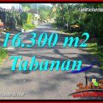 TANAH di TABANAN JUAL MURAH 163 Are View kebun