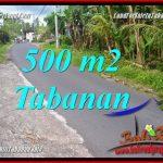 INVESTASI PROPERTY, TANAH di TABANAN DIJUAL MURAH TJTB362