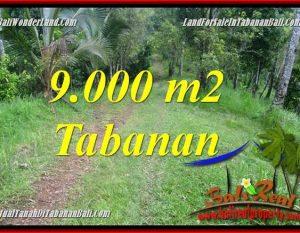 INVESTASI PROPERTI, TANAH DIJUAL di TABANAN BALI TJTB364