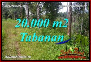 JUAL TANAH di TABANAN 20,000 m2 di Tabanan Selemadeg Timur
