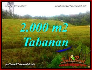 JUAL TANAH MURAH di TABANAN 2,000 m2 View Laut, Gunung dan Sawah