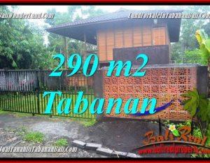 DIJUAL MURAH TANAH di TABANAN BALI Untuk INVESTASI TJTB358