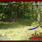 TANAH MURAH JUAL TABANAN 163 Are View kebun