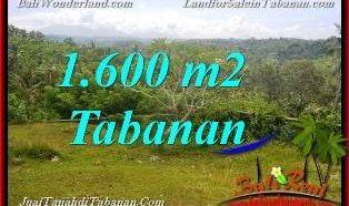 DIJUAL MURAH TANAH di TABANAN BALI 1,600 m2 di Tabanan Selemadeg