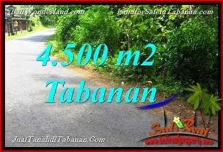 TANAH DIJUAL di TABANAN BALI Untuk INVESTASI TJTB380