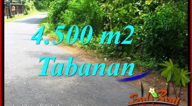 JUAL TANAH MURAH di TABANAN BALI 4,500 m2 View Kebun