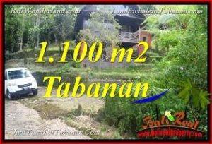 JUAL TANAH MURAH di TABANAN BALI 1,100 m2 View Danau Beratan dan Gunung