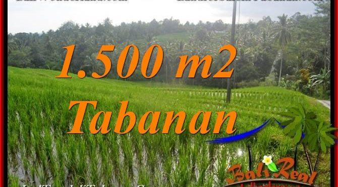 INVESTASI PROPERTY, TANAH MURAH di TABANAN DIJUAL TJTB375