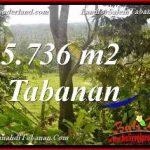 DIJUAL TANAH DI TABANAN Untuk INVESTASI TJTB376