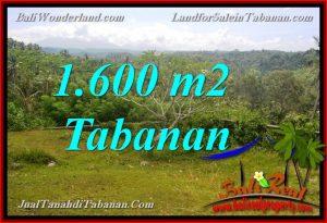 INVESTASI PROPERTI, TANAH MURAH DIJUAL di TABANAN TJTB378