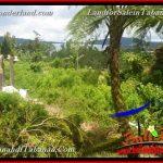 JUAL TANAH MURAH di TABANAN 1,100 m2 View Danau Beratan dan Gunung