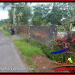JUAL MURAH TANAH di TABANAN BALI 22.8 Are View Laut, Gunung dan sawah