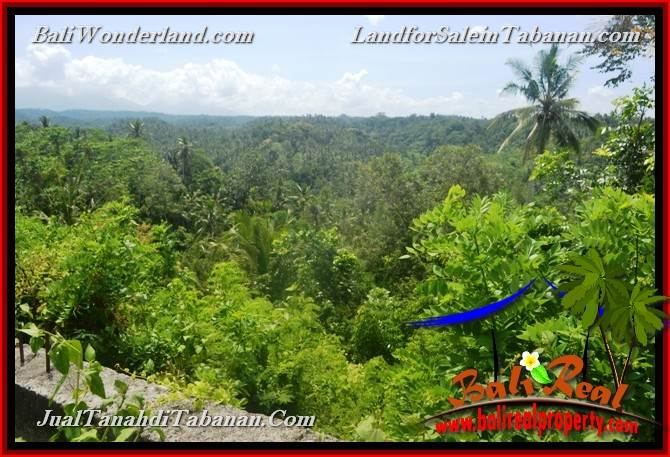 TANAH MURAH JUAL di TABANAN BALI 1,600 m2 View gunung dan sawah