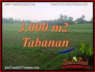 INVESTASI PROPERTI, DIJUAL MURAH TANAH di TABANAN TJTB389