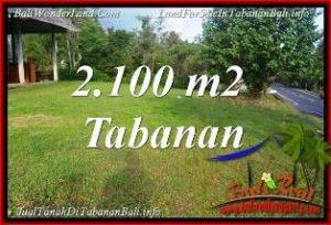 TANAH di TABANAN JUAL MURAH 2,100 m2  VIEW KEBUN