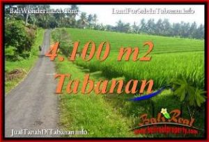 JUAL TANAH MURAH di TABANAN BALI 41 Are VIEW SAWAH, LINGKUNGAN VILLA