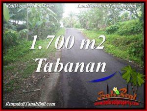JUAL MURAH TANAH di TABANAN 1,700 m2 VIEW KEBUN