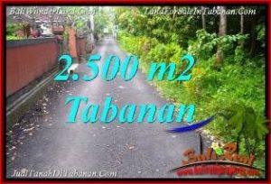 DIJUAL MURAH TANAH di TABANAN BALI Untuk INVESTASI TJTB391