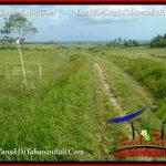 JUAL TANAH MURAH di TABANAN Untuk INVESTASI TJTB382