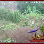 TANAH MURAH DIJUAL di TABANAN BALI 8 Are di TABANAN SELEMADEG