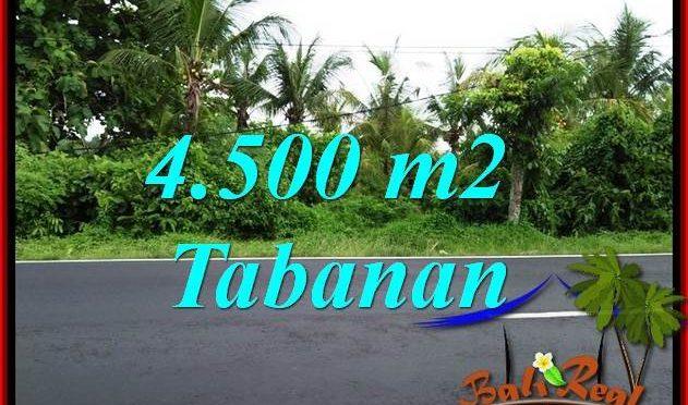 Tanah Murah di Tabanan Dijual 45 Are di Tabanan Selemadeg