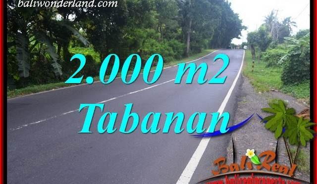 Tanah Dijual di Tabanan 20 Are View Sawah