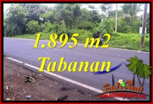 Tanah Murah di Tabanan Dijual 1,895 m2 di Tabanan Selemadeg